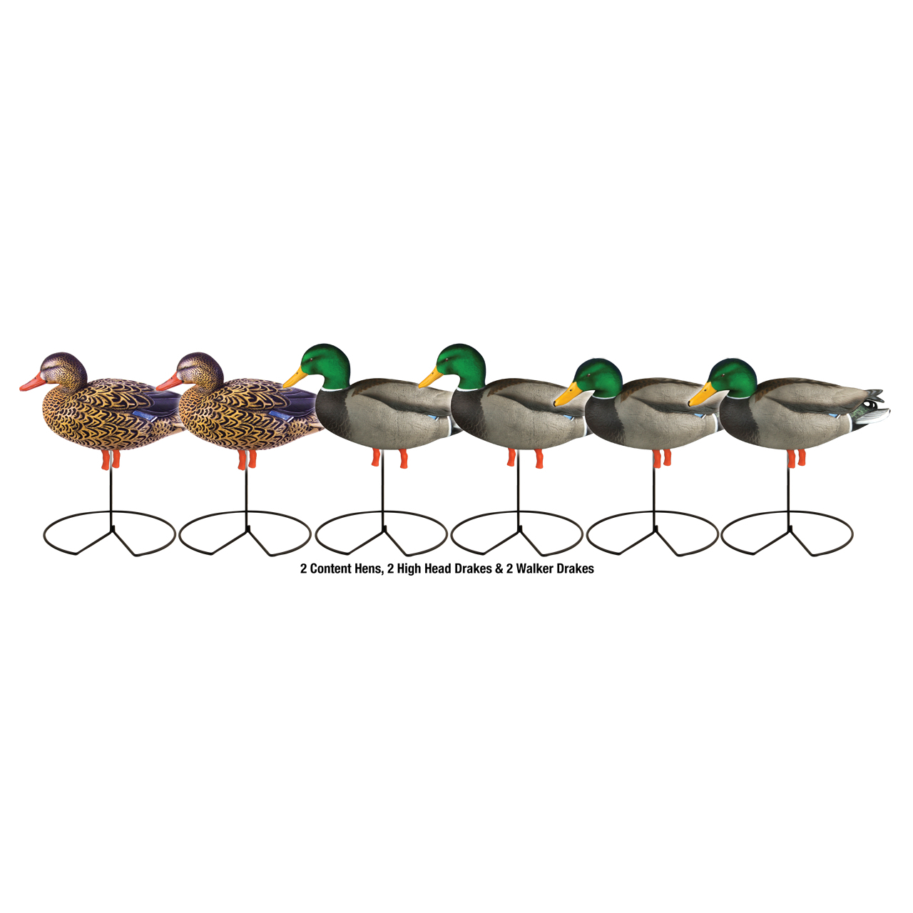 Avery GHG Pro-Grade Full Body Mallard/Active Decoys (Pk/6) thumbnail
