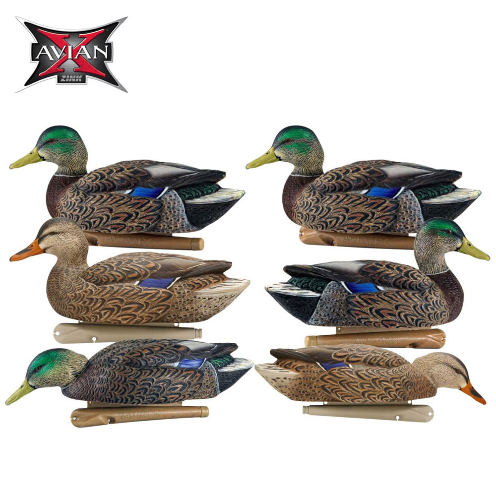 Avian X Topflight Early Season Mallards Decoys Pk6